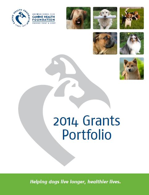 akcchfgrants2014